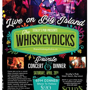 Whiskeydicks Live at Scullys Pub